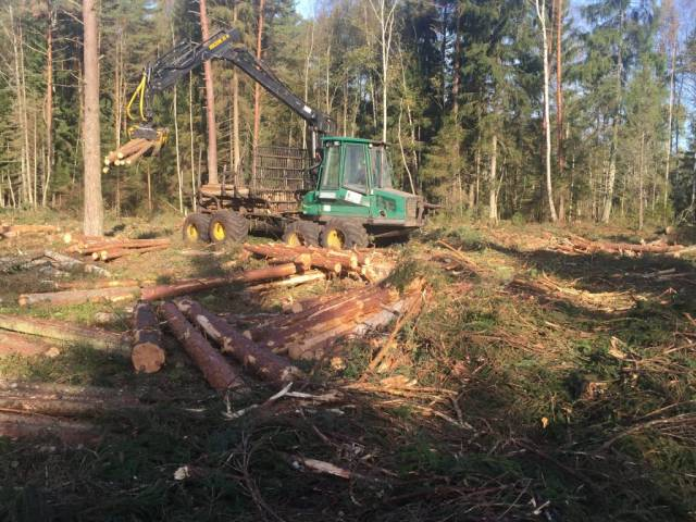 timberjack metsas töötamas